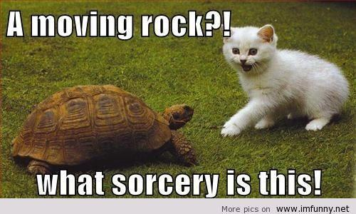 Moving-rock-sorcery