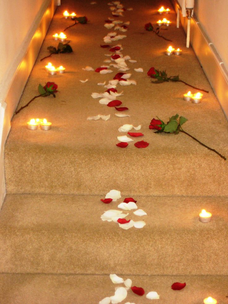 path of rose petals