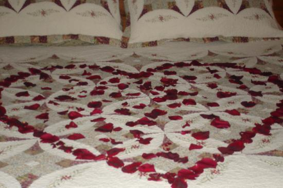 rose-petals-on-the-kings
