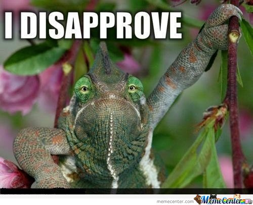 disapprove turtle